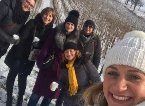 Wow druženje u vinogradu Kolaric