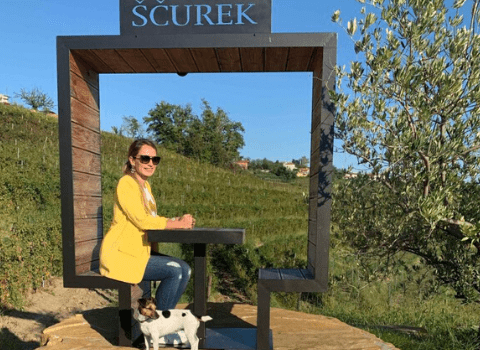 Posjet vinariji Scurek Andrea Pancur
