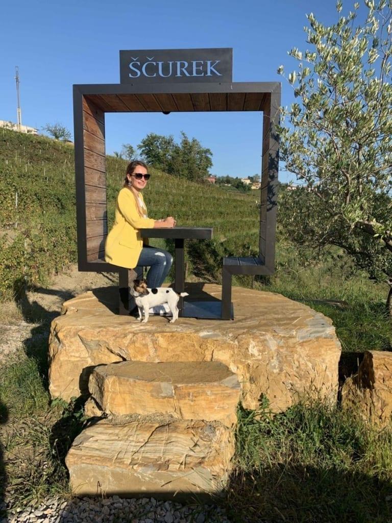 Andrea Pancur u vinogradu Ščurek