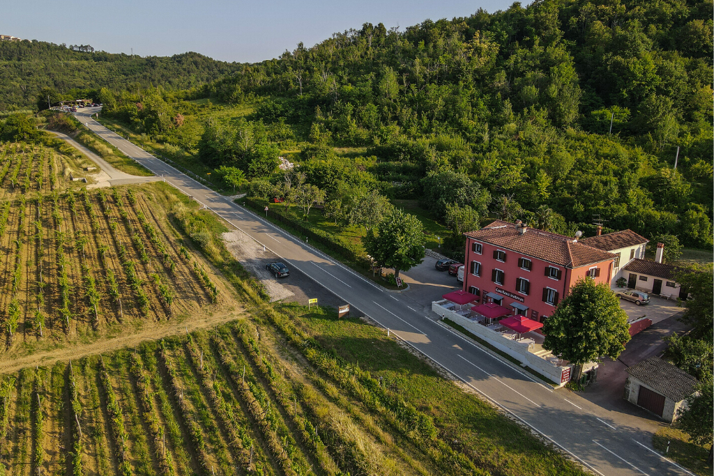 Banka vina Motovun