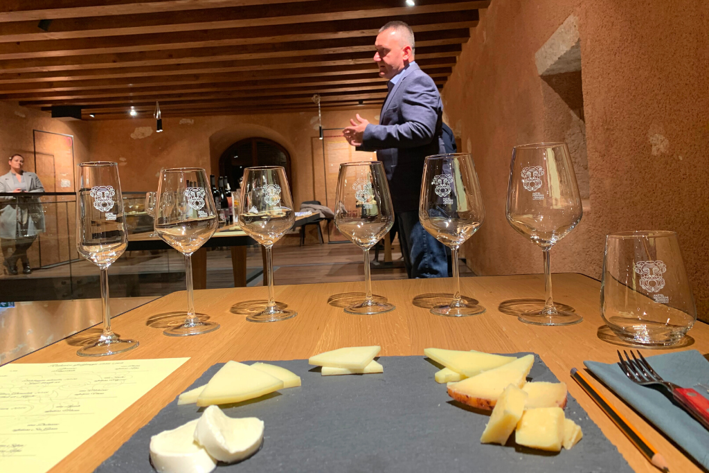 Degustacija sira i vina